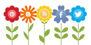 social-media-growth