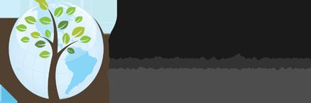 bearing-tree-logo